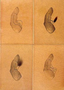 FOUR-LIVING-FINGER-1993-Varnish-and-ink-on-wood--40-x-30-x-3-cm