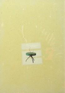 GLASSHAIR VIII 1994 Resina de poliester  y collage 24,5 x 17 x 2,5 cm