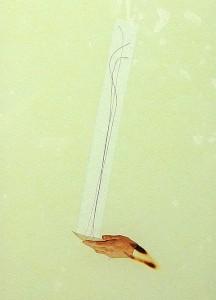 GLASSHAIR XIII 1994 Resina de poliester  y collage 24,5 x 17 x 2,5 cm
