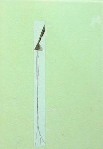 GLASSHAIR XV 1994 Resina de poliester  y collage 24,5 x 17 x 2,5 cm