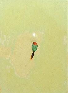 GLASSLENS XIV 1997 Resina de poliester cristal collage 12 x 29,7 x 3 cm